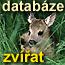 Databáze zvířat